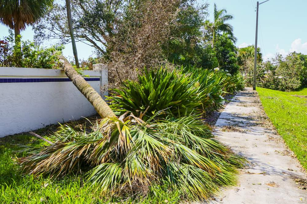 After The Storm: Why You Should Have A Conversation With Your Insurance Agent