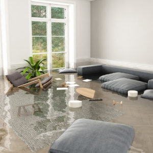 Flood insurance for homepage