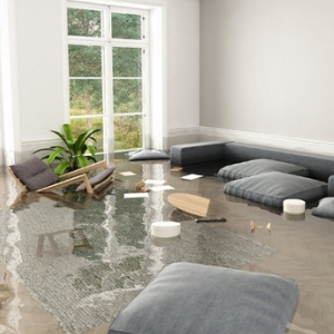 Homepage Flood Insurance