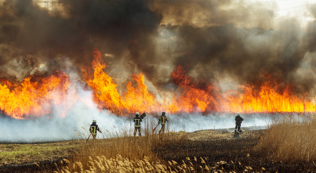 Wildfire Insurance Mitigation For Homeowners